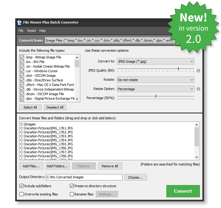 file viewer plus format